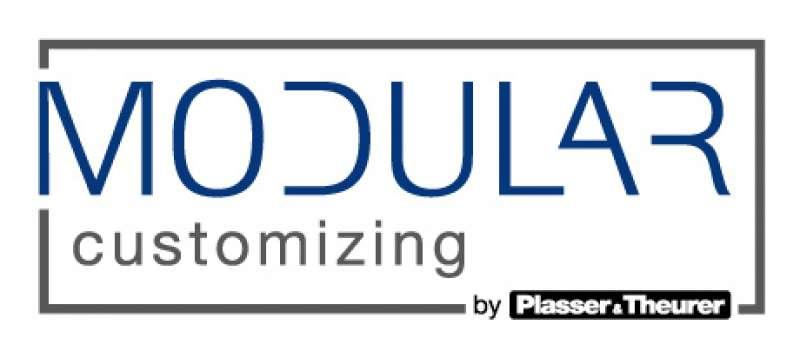 Modular Customizing Logo